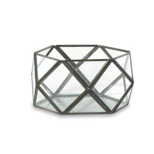 Talni Glass Terrarium By Nkuku