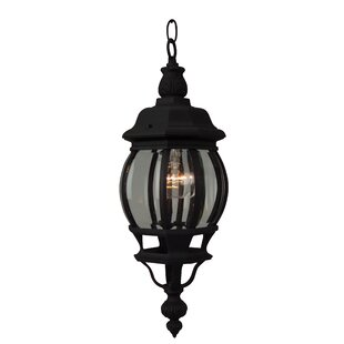 Charlton Home Oakhill Pumpkin Outdoor Pendant