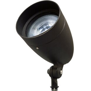 Spot Light By Dabmar Lighting