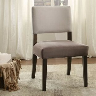 Donna Side Chair Set of 2 by Ebern Designs