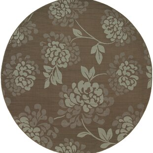 Maryanne Green/Brown Indoor/Outdoor Area Rug