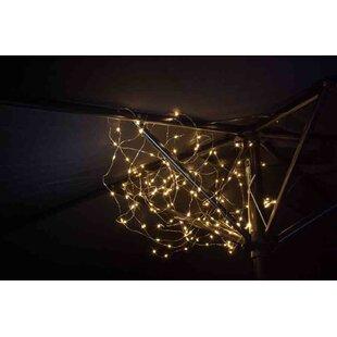 Husband 150-Light Fairy Light By Sol 72 Outdoor
