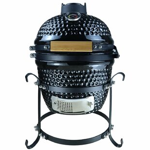 35cm Monteiro Portable Charcoal Barbecue By Symple Stuff