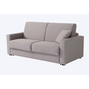 Rachael Queen Sleeper Sofa by Brayden Studio Discount