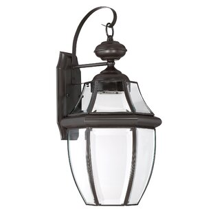 Darby Home Co Haines Outdoor Wall Lantern