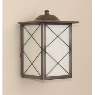 Brayden Studio Steinberg 1-Light Outdoor Wall Lantern