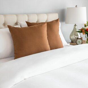 Sensational Wayfair Basics Throw Pillow Set Of 2 Andrewgaddart Wooden Chair Designs For Living Room Andrewgaddartcom