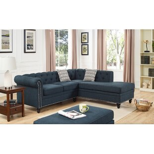 Darby Home Co Ameer Modular Sectional
