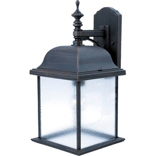 Alcott Hill Mesa Outdoor Wall Lantern