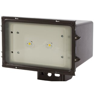 Nuvo Lighting 1-Light LED Flood Light
