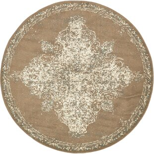 Forcalquier Brown Area Rug by Lark Manor