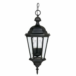 Hounsfield 3-Light Outdoor Hanging Lantern