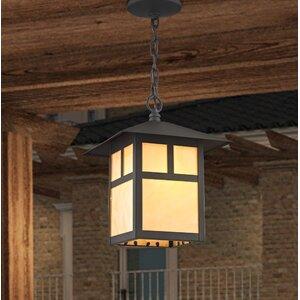 Giles 1-Light Outdoor Hanging Lantern