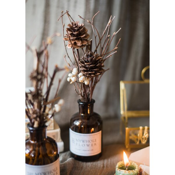 Gracie Oaks Natural Dried Flower Branches Floral Arrangements And Centerpieces In Vase Wayfair