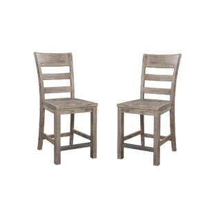 Hegg 24 Bar Stool with Ladder Back (Set of 2) by Williston Forge
