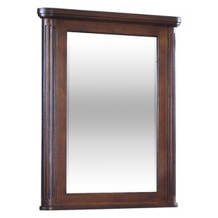 Arlington Mirror by Kaco International