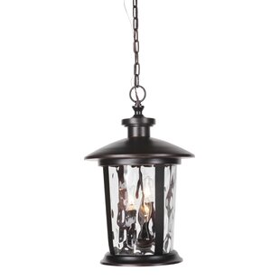 Irasville 3-Light Outdoor Hanging Lantern
