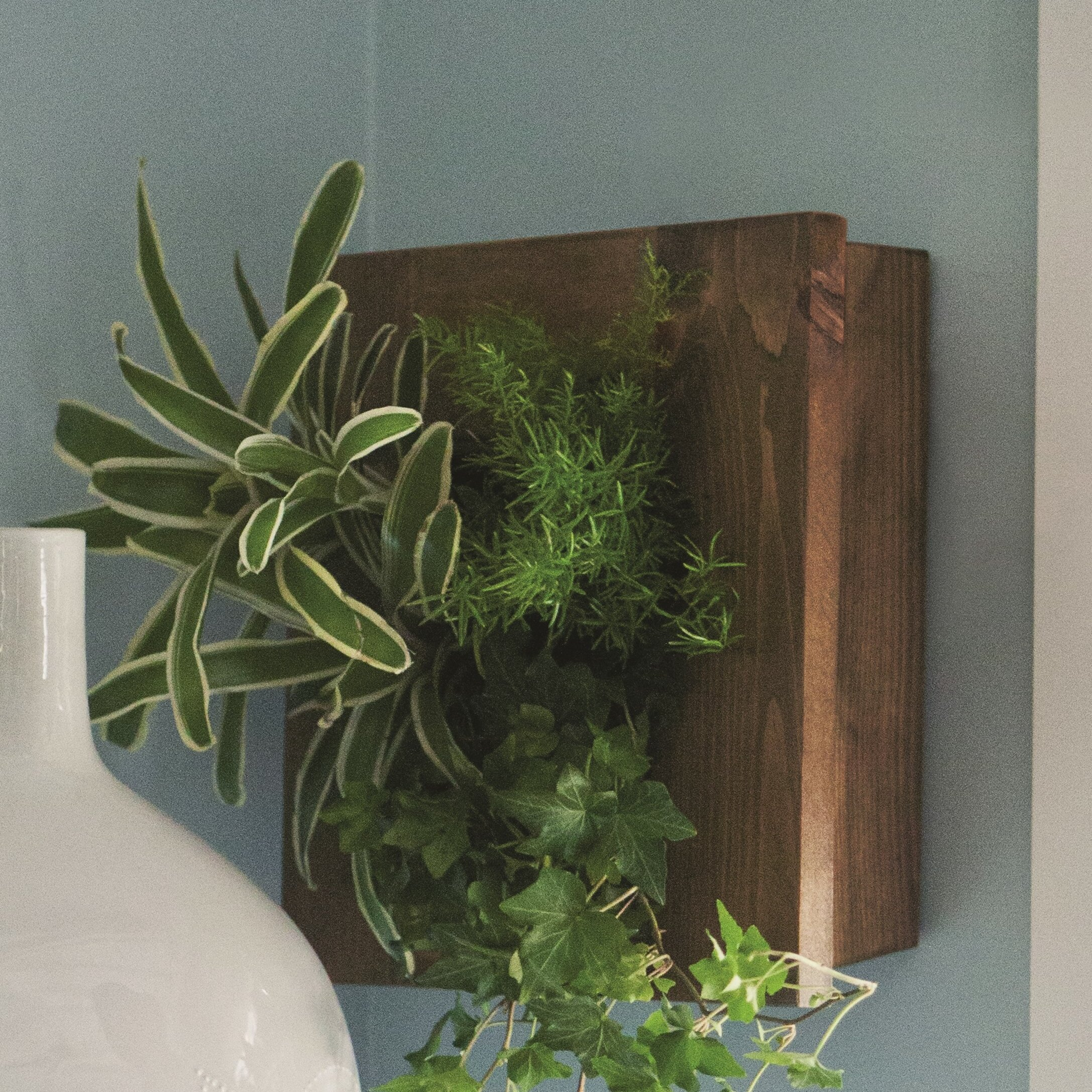 Hegeman Reclaimed Wood Wall Planter Reviews