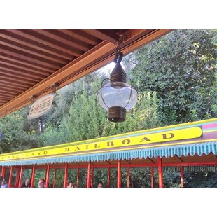 600 Series 1-Light Outdoor Hanging Lantern