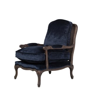 NyAsia Armchair by Darby Home Co