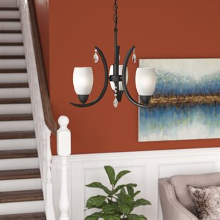 Darby Home Co Berenice 3-Light Shaded Chandelier