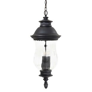 Great Outdoors by Minka Newport 4-Light Outdoor Pendant