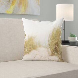 Sand Throw Pillows Wayfair