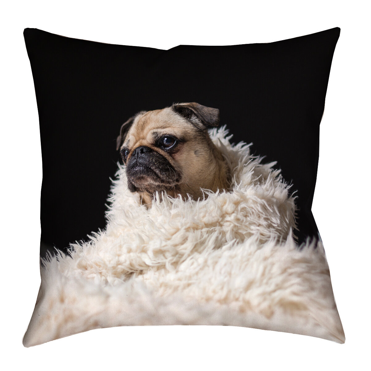 Latitude Run Karlos Pug In Blanket Throw Pillow With Zipper Wayfair