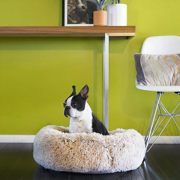 Terrific Kirkland Round Dog Bed Wayfair Squirreltailoven Fun Painted Chair Ideas Images Squirreltailovenorg