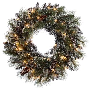 Outdoor prelit wreaths youll love wayfair pre lit decorated 185 outdoor lighted wreath aloadofball Choice Image