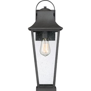 Endicott Outdoor Wall Lantern