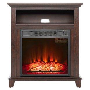 Solid Wood Electric Fireplace | Wayfair