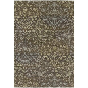Ridgway Flatweave Brown Indoor/Outdoor Area Rug