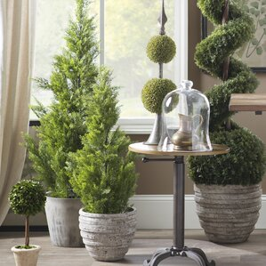 Artificial trees you 39 ll love wayfair for Green floor plant