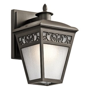 One Allium Way Carcassonne 1-Light Outdoor Wall Lantern