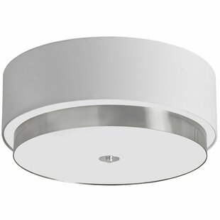 Wade Logan Skylar 4-Light Flus..