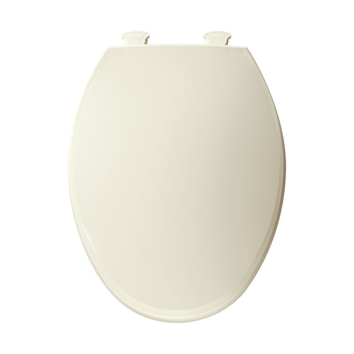 Groovy Elongated Toilet Seat Creativecarmelina Interior Chair Design Creativecarmelinacom