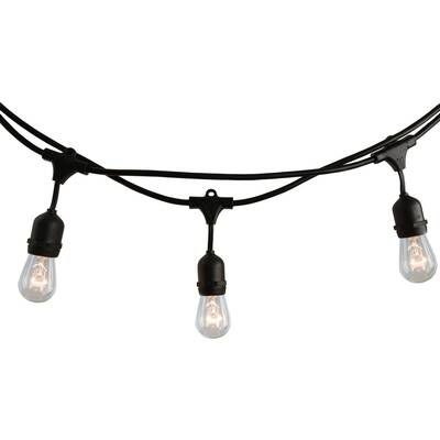 Wrought Studio Arielle 10 Light 14 Ft String Light Reviews
