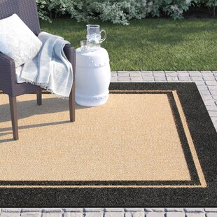 Barker Indoor/Outdoor Area Rug