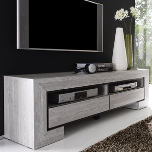 Bingaman 63 TV Stand by Brayden Studio