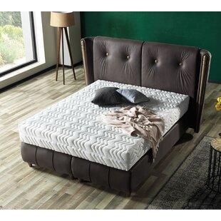 Olga Queen Storage Sleigh Bed with Mattress by Brayden Studio