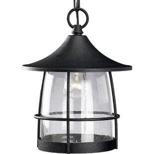 Affordable Triplehorn 1-Light Incandescent Hanging Lantern By Alcott Hill