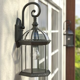 Sol 72 Outdoor Estero 1-Light Outdoor Wall Lantern