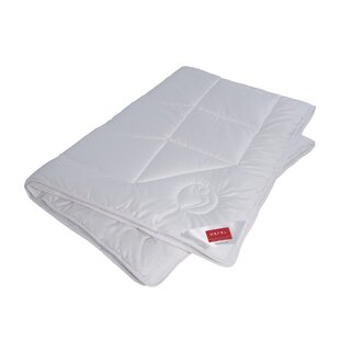 Parsons Single Comforter by Alwyn Home