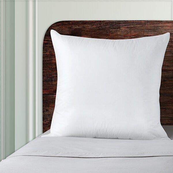 European Pillow Joss Main