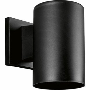 Casale Black Incandescent Plastic Cylinder 1-Light Outdoor Sconce by Ivy Bronx