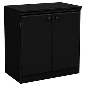 Caines 2 Door Storage Cabinet
