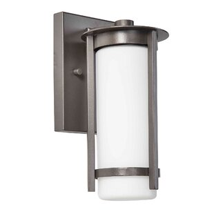 Great Price Leiser Outdoor Sconce By Latitude Run