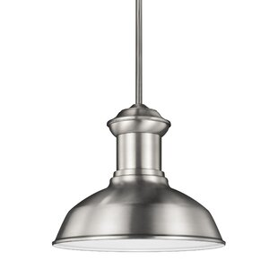 Laurel Foundry Modern Farmhouse Vallie 1-Light Outdoor Pendant