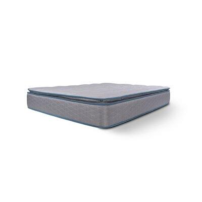 Alwyn Home 11 Premium Foam Pillowtop Mattress Mattress Size: California King